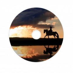 Verbatim DVD+R 8x DL 8.5GB...